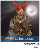 SPRINGER217